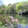 The lake at Cantonteign