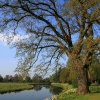 Shugborough Estate by the River Trent