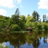 The Lake at Cragside