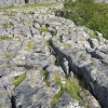 Malham Cove, Limestone Pavements.