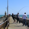 Fishing off the harbour wall at Folkestone