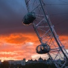 The London Eye at dusk