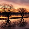 Sunrise over the floods in Upton