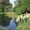 Arlinton Court Pond