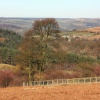 North Yorkshire Moors 1