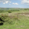 On the moors 5
