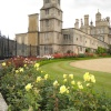 Rose border at Burghley