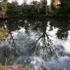 Blundeston pond reflections