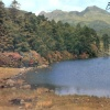 Blea Tarn and Langdale Pikes, Cumbria, postcard