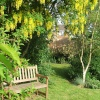 My Garden in the Garden of England