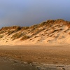 Dunes near Sunset