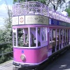 Seaton Trams