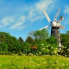 Windmill at Alford