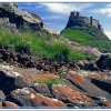 Lindisfarne Castle view.