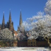 The Cathedral Spires from The Memorial Garden