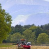 Harvest time in Keswick