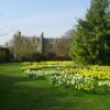 Peterhouse College Gardens