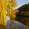 Autumn on the River Wye
