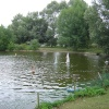 Needham Lake near Needham Market