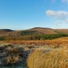 From Burbage towards Higger Tor, Derbyshire