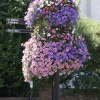 Lamp post flower box