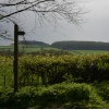 Countryside near Broseley, Shropshire