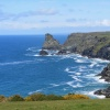 Bossiney Bay