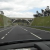 The New Tunnel at Hindhead