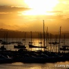Sunset over Brixham