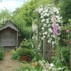 Gentleman's Cottage Garden at Barnsdale