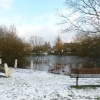 Lower Ashtead Pond