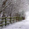 Winter wonderland in Watermead Country Park