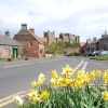 Spring at Bamburgh