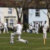 Fareham Cricket