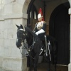 Guard duty in Whitehall, London