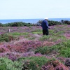 Wonder what this man was looking for on Dunwich Heath