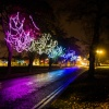 Harrogate Christmas Lights!