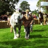 Frampton Country Show