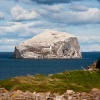 Bass Rock in nicely lit by the sun
