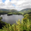 Grasmere View.