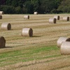 After the harvest - hay bales at Upper Poppleton, North Yorkshire