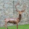 The Kidwelly Stag