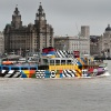 Snowdrop fit to dazzle. River Mersey Ferry.