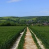 South Downs way to Alfriston
