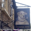 The Smoking Dog Pub Sign, Malmesbury, Wiltshire 2013