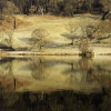 Winter Morning Rydal Water, Nr Ambleside