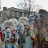 Three Wise Camels in Gravesend Town