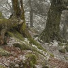 Hail Storm on Hen Cloud, The Roaches, Upper Hulme, Staffordshire Moorlands