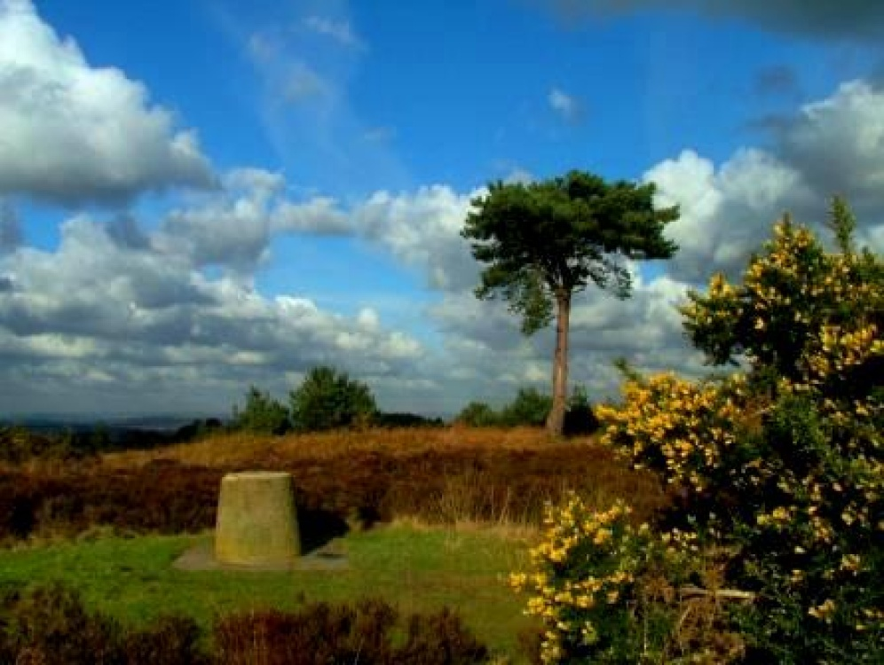 Ashdown Forest, East Sussex