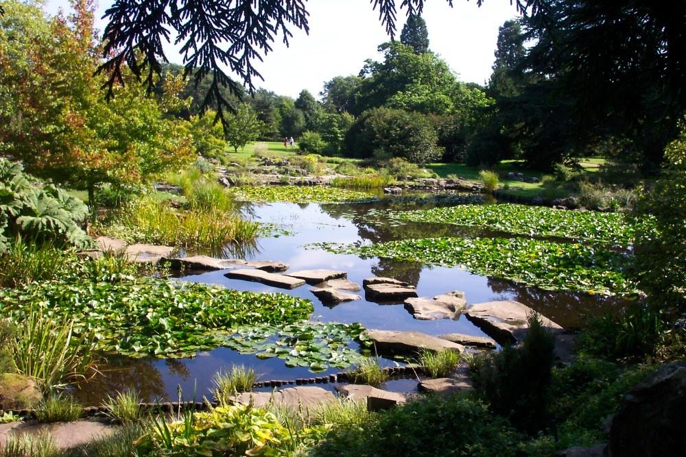 University Botanic Gardens Cambridge By Mac Mcfarlane